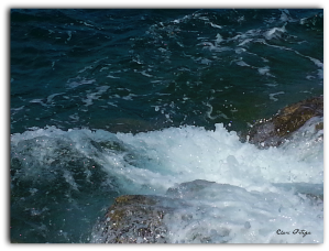 El Agua de Mar; Fuente de Vida