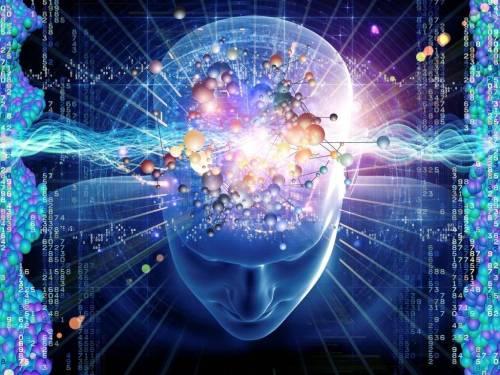 El Gran Salto Evolutivo de la Neurociencia II